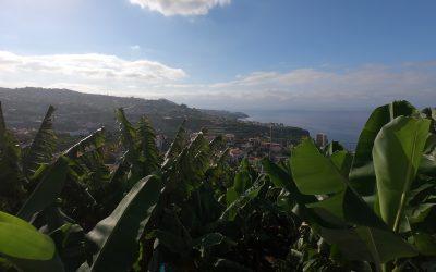 Reasons to Visit Madeira Island